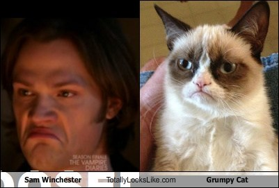 Sam Winchester Totally Looks Like Grumpy Cat