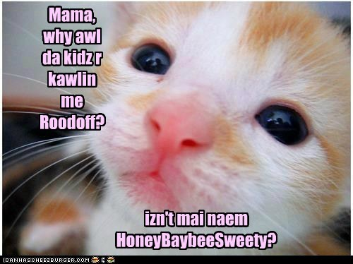 Mama, why awl da kidz r kawlin me Roodoff?