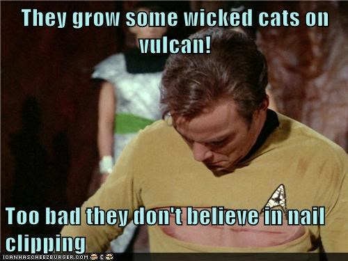 They grow some wicked cats on vulcan!  Too bad they don't believe in nail clipping