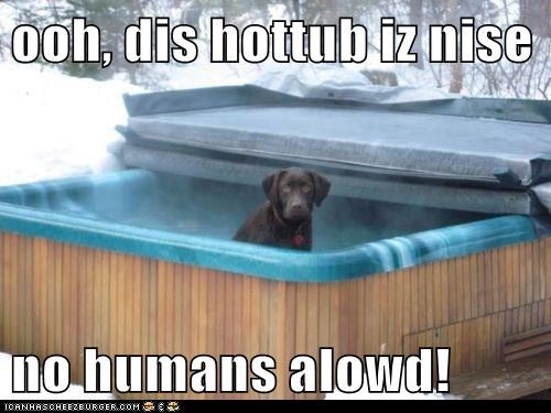 ooh, dis hottub iz nise  no humans alowd!