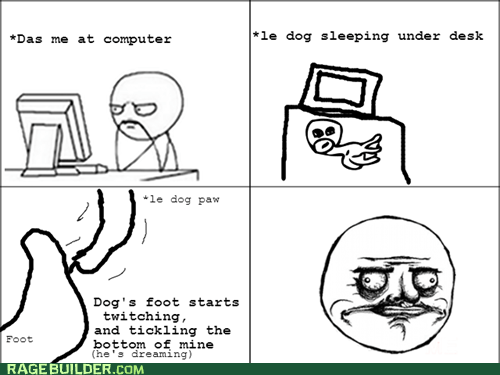 Perks of Having a Dog