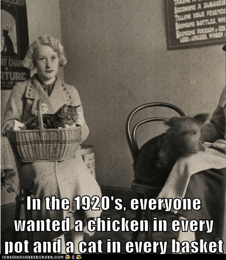 In the 1920's, everyone wanted a chicken in every pot and a cat in every basket