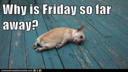 Why is Friday so far away?