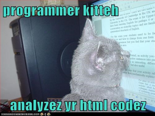 programmer kitteh  analyzez yr html codez