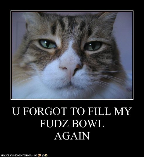U FORGOT TO FILL MY FUDZ BOWL AGAIN