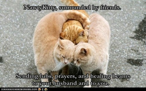 NawtyKitty - Giving you a {{BIG HUG}} and wishing your husband a speedy recovery.