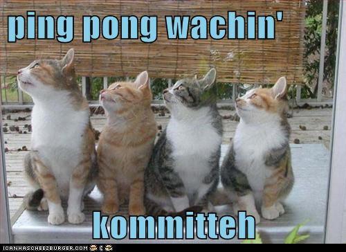 ping pong wachin'  kommitteh
