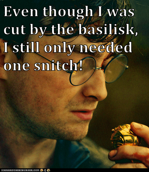 Even though I was cut by the basilisk, I still only needed one snitch!