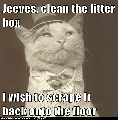 Jeeves, clean the litter box  I wish to scrape it back onto the floor