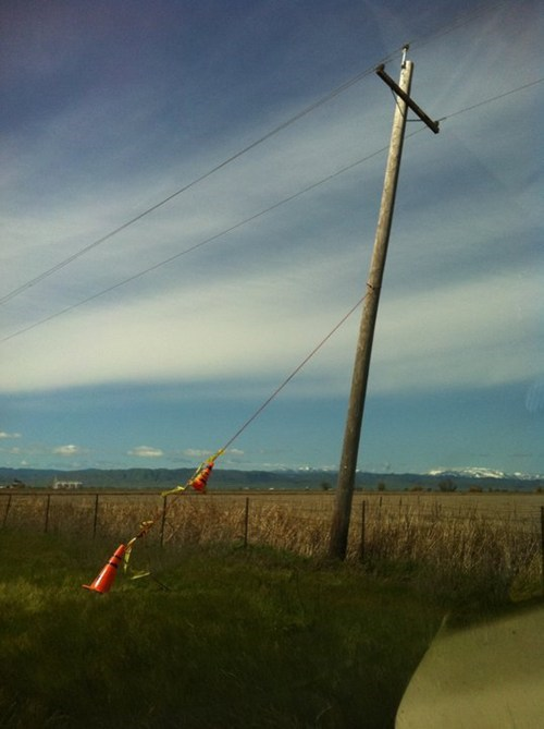 telephone poles,unstable,funny