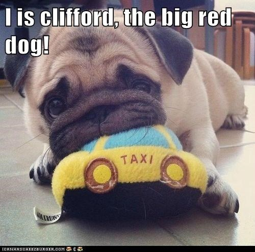 I is clifford, the big red dog!