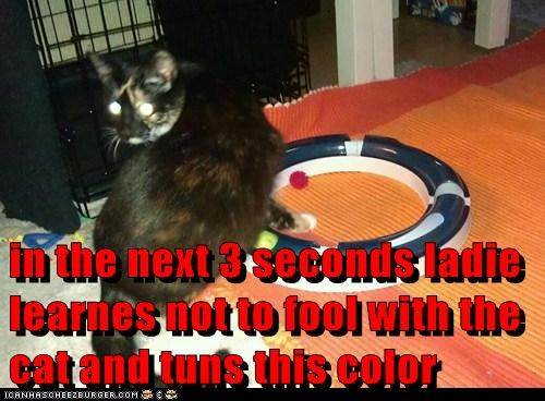 in the next 3 seconds ladie learnes not to fool with the cat and tuns this color