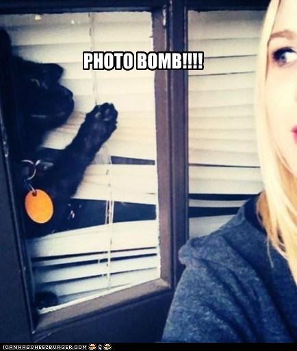 PHOTO BOMB!!!!