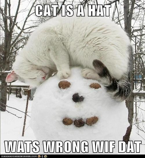 CAT IS A HAT  WATS WRONG WIF DAT
