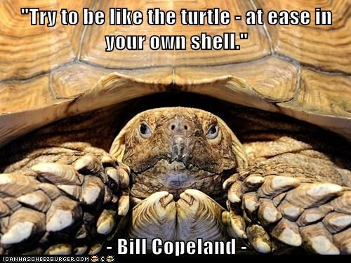 """Try to be like the turtle - at ease in your own shell.""  - Bill Copeland -"