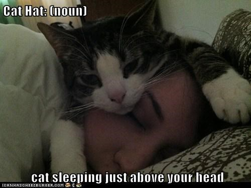 Cat Hat: (noun)   cat sleeping just above your head