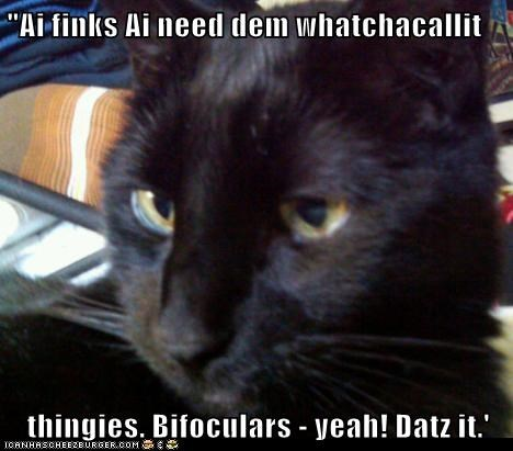 """Ai finks Ai need dem whatchacallit  thingies. Bifoculars - yeah! Datz it.'"