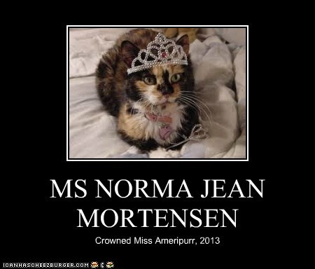 MS NORMA JEAN MORTENSEN