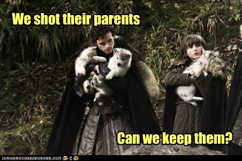 keep,Jon Snow,Isaac Hempstead Wright,kit harrington,Game of Thrones,puppies,bran stark,can we keep him,parents,shot