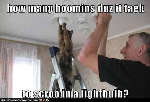 how many hoomins duz it taek  to scroo in a lightbulb?