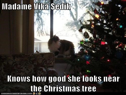 Madame Vika Sedik  Knows how good she looks near the Christmas tree