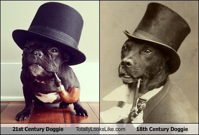 21st Century Doggie Totally Looks Like 18th Century Doggie
