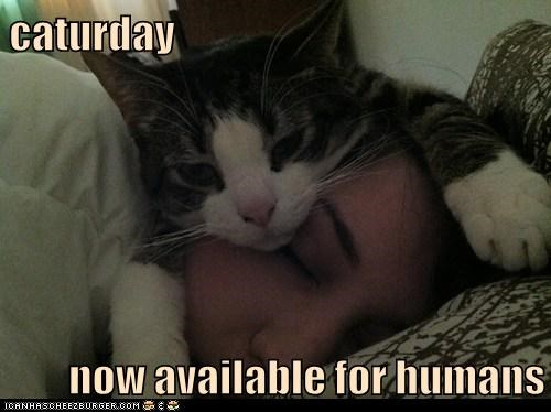 caturday  now available for humans