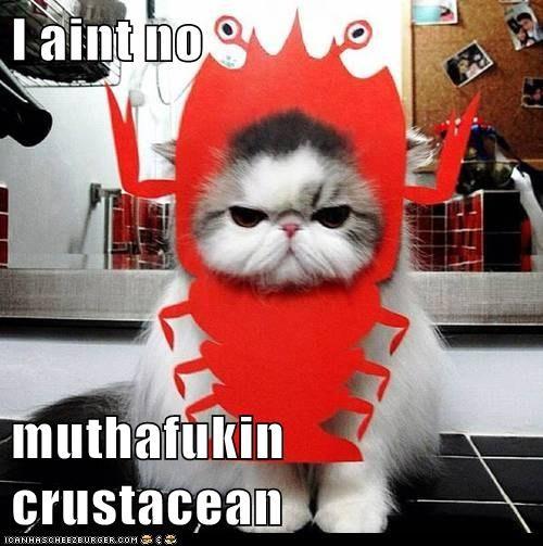 I aint no  muthafukin crustacean