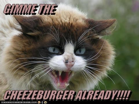 GIMME THE   CHEEZEBURGER ALREADY!!!!