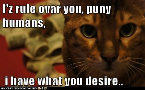 I'z rule ovar you, puny humans,   i have what you desire..