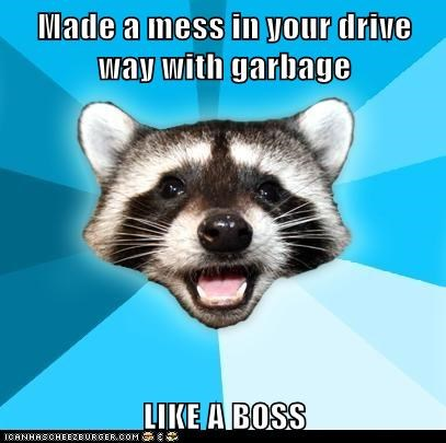 Made a mess in your drive way with garbage  LIKE A BOSS