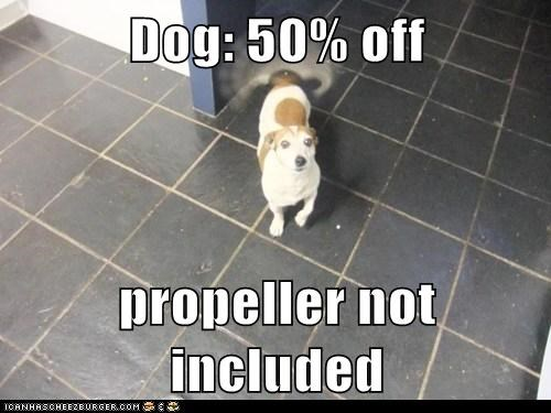 Dog: 50% off  propeller not included