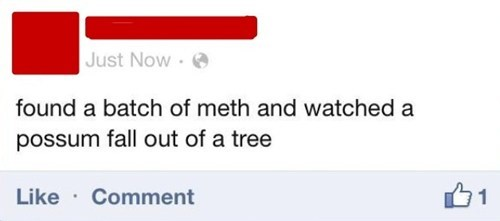 Statuses Don't Get Any More Redneck Than This