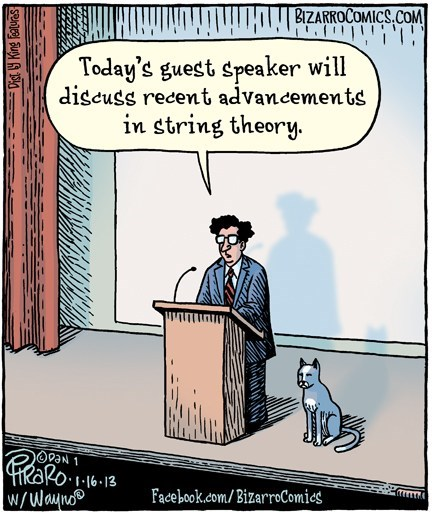 The Talk Was a Cat-Tastrophe