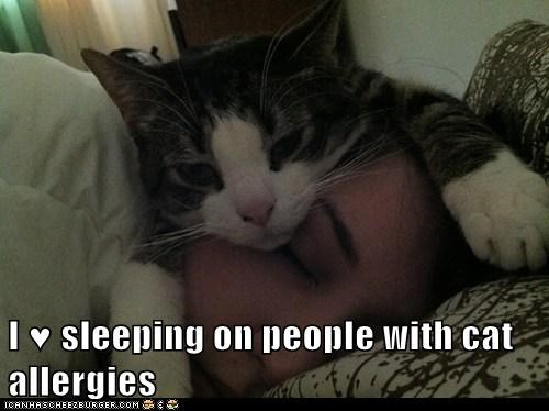 I ♥ sleeping on people with cat allergies