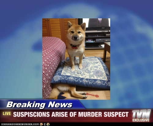 Breaking News - SUSPISCIONS ARISE OF MURDER SUSPECT