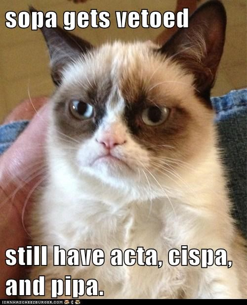 sopa gets vetoed  still have acta, cispa, and pipa.