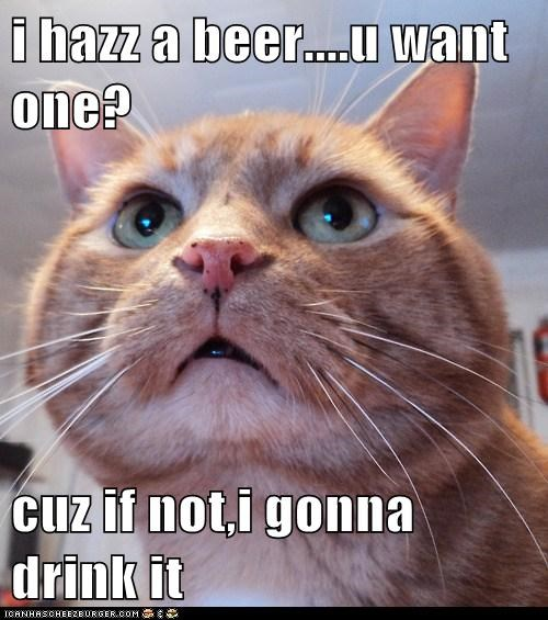 i hazz a beer....u want one?  cuz if not,i gonna drink it