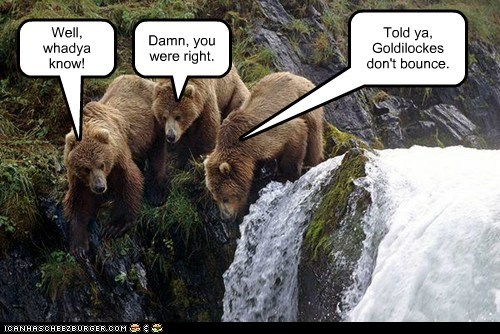 what do you know,bears,bounce,cliff,goldilocks,waterfall,science