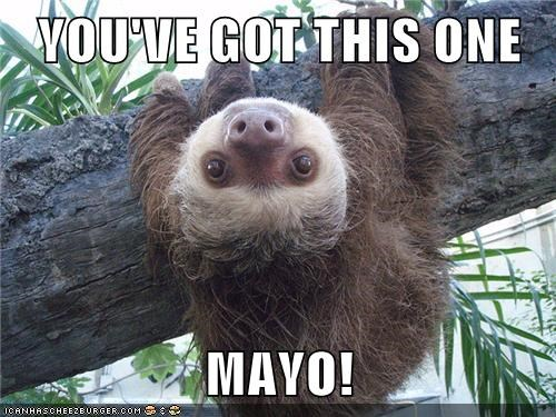 YOU'VE GOT THIS ONE  MAYO!
