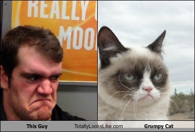 This Guy Totally Looks Like Grumpy Cat