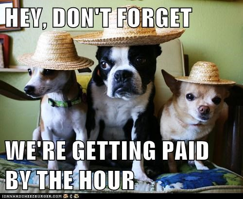 HEY, DON'T FORGET  WE'RE GETTING PAID BY THE HOUR