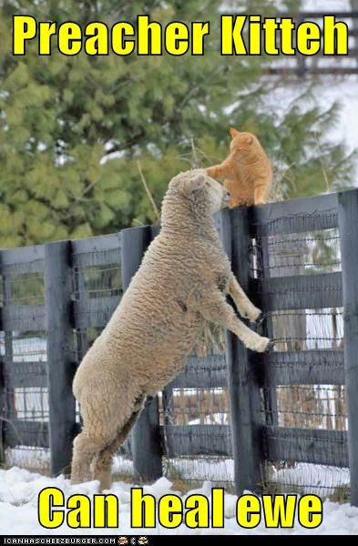 Preacher Kitteh  Can heal ewe
