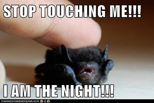 STOP TOUCHING ME!!!  I AM THE NIGHT!!!