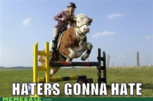 haters gonna hate,ponies,wtf,cow riding
