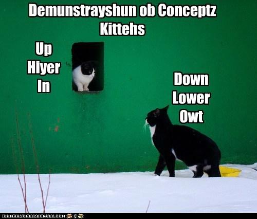 Demunstrayshun ob Conceptz Kittehs