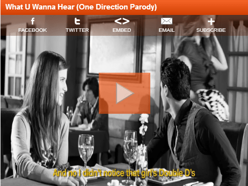 What U Wanna Hear (One Direction Parody)