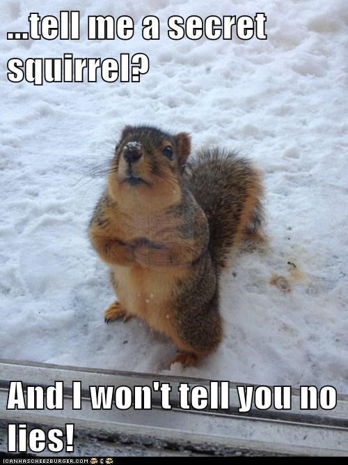 ...tell me a secret squirrel?  And I won't tell you no lies!