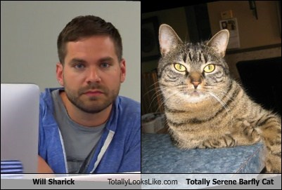 Will Sharick Totally Looks Like Totally Serene Barfly Cat