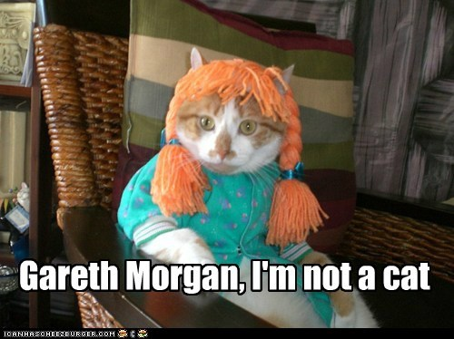 Gareth Morgan, I'm not a cat
